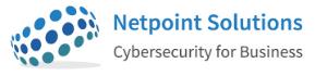 Netpoint Solutions Logo